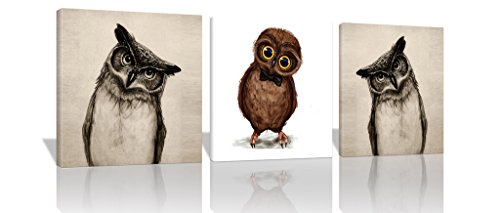 Spirit Up Art - 3Pcs/Sets 16x16inches Modern Giclee Prints Artwork Lovely Owls Animals Pictures Photo Paintings on Canvas Wall Art for Home Walls Decor Decorations, Stretched and Framed, Ready to Hang (Art Pic Owl)