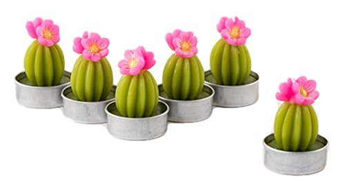 One Hundred 80 Degrees Flowering Cactus Tealights (Set/6)