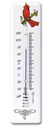 - Analog Wall Thermometer 8.5 inch Polyurethane Coated Steel (Cardinal Bird)