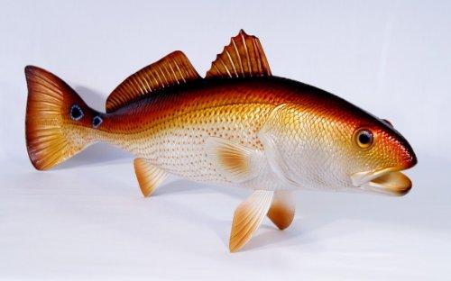 (LX Handpainted Large Redfish Statue Saltwater Game Fish Replica 28