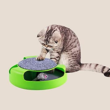 Amazon.com : Best Quality abs Plastic cat Kitten Toys with Moving Mouse Inside Roped Funny Faux Mouse Play Toys Gatos for Kids & cat Green cat Supplies ...