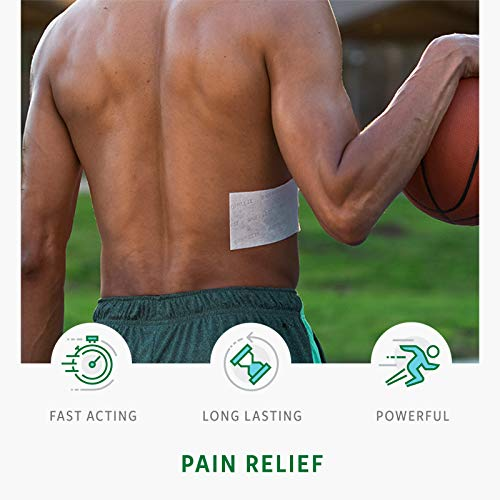 Biofreeze Pain Relief Patch, Large, 15 Patches