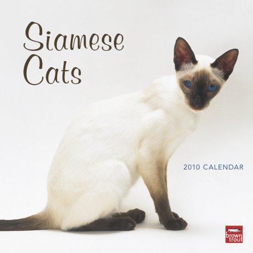 (Siamese Cats 2010 Square Wall (Multilingual)