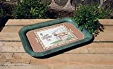 D-LODGE ADVERTISING TRAY