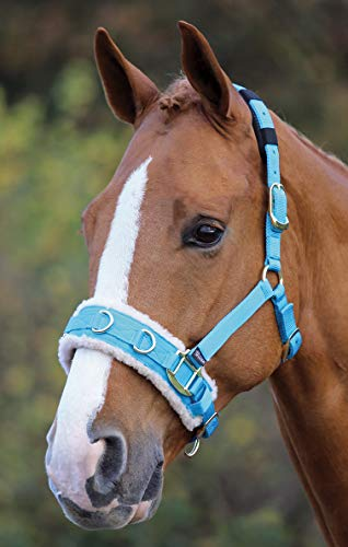 - Shires Fleece Lined Lunge Cavesson Full Blue