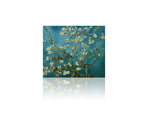 Stretch Canvas Gallery Wrap (DreamArts - Almond Blossom by Vincent Van Gogh Oil Painting Print Canvas Wall Art, Photo to Paintings Home Decore Wall Decor Canvas Gallery Wrap, 20x24 -No Stretch, Print Only)