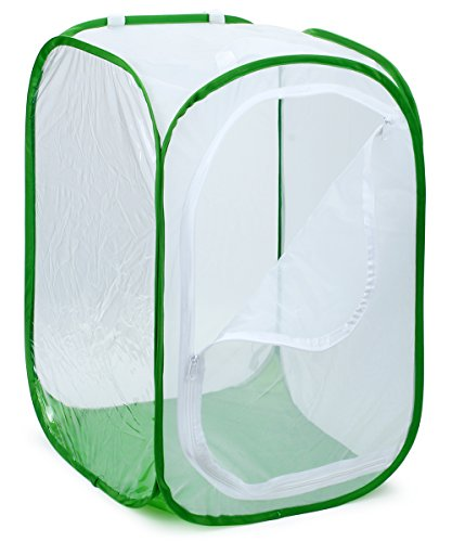 "RESTCLOUD 36"" Large Monarch Butterfly Habitat, Giant Collapsible Insect Mesh Cage Terrarium Pop-up 24 x 24 x 36 Inches Tall (White + Green)"
