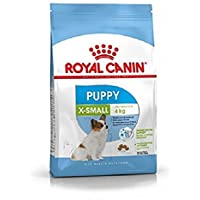 Royal Canin Size Health Nutrition Xs Junior (1.5 Kg)