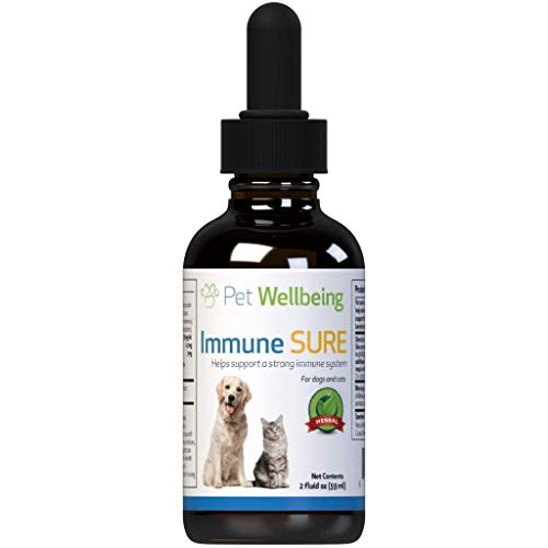 Pet Wellbeing Immune Sure for Cats - Herbal Antibiotic for Viral or Bacterial Infections in Felines - 2oz (59ml)