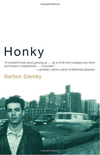 honky by dalton conley essay