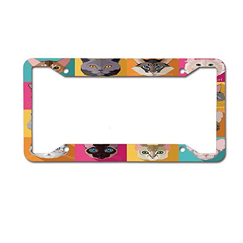 MichelleSmithred Popular Breeds of Cats Abyssinian Burmese Sphynx Norwegian Forest License Plate Frame Aluminum Car tag Cover 4 Holes and Screws for US and Canada ()