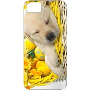 DIY Apple iPhone 5S Case Customized Gifts Personalized With Animals springtime snooze Animals Birds Cute Animals...