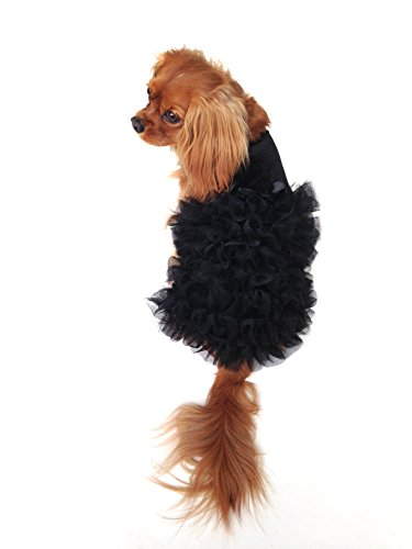 The Dog Squad Red Carpet Ruffle Dress, Small, Black ()