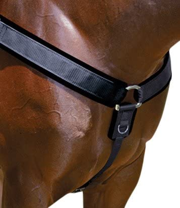 B00266Z9N4 Professionals Choice Equine Neoprene Breast Collar (Universal Size) 414oEpzRLUL