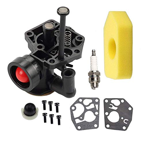 Fuerdi 795477 Carburetor for Briggs & Stratton 498811 795469 794147 699660 carb with 698369 Air Filter Gasket & Diaphragm Kit