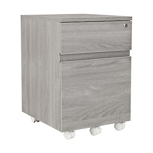 Cheap Techni Mobili Rolling 2 Drawer Vertical Filing Cabinet with Lock and Storage, Grey