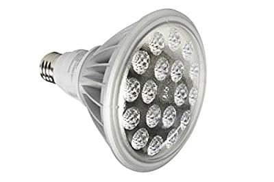 25W LED PAR38 Spot / Flood Light - 2500 Lumens - Dimmable by Voltage Regulation - 277V 1P