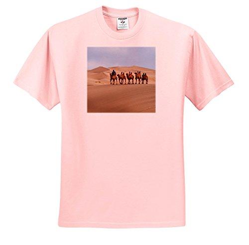 Gobi Desert Camel - 5