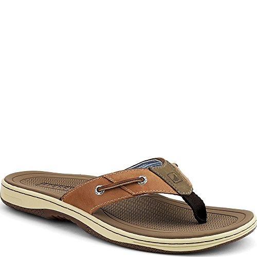 Sperry Top-sider Mens Betesfisk Rem Sandal Tan Läder