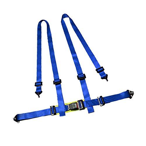 Spec D Tuning RSB 4PTB Camlock Harness