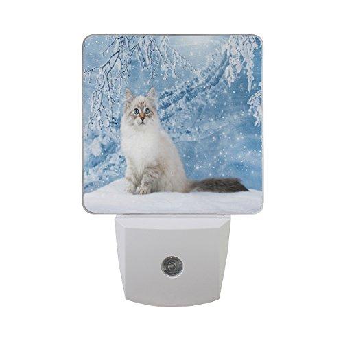 ALAZA Winter Snow Snowflake Cat Kitten LED Night Light Dusk to Dawn Sensor Plug in Night Home Decor Desk Lamp for Adult
