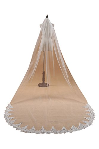 Lace Edge Cathedral Long Length Wedding Bridal Veil With Comb,White (White Veil Bridal)
