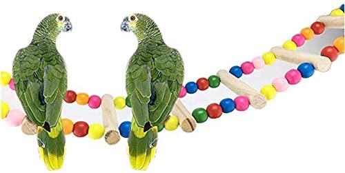 TOTO - Escalera Colgante para pájaros, Loro, Loro, pájaro, Bautizo o pájaro: Amazon.es: Productos para mascotas