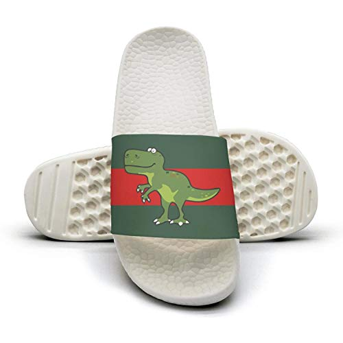 (The Big Bang Theory T Rex Dinosaur man red and green stripe flat Slipper Sandals Mules Slippers)