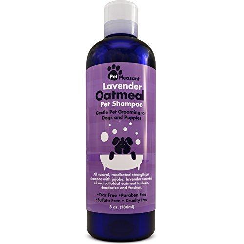 Colloidal Oatmeal Shampoo Lavender Essential product image