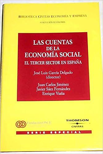 LAS CUENTAS DE LA ECONOMÍA SOCIAl. EL TERCER SECTOR EN ESPAÑA.: Amazon.es: García Delgado, Juan Luis (Dir.): Libros