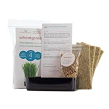 Wheatgrass Grow Kit. Easily grow 4 trays of fresh, organic superfood on your windowsill. Grow 4 portions wheatgrass in just 9 days
