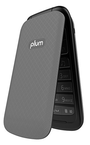 PLUM Unlocked Flip GSM Cell Phone Camera Bluetooth FM Rad...