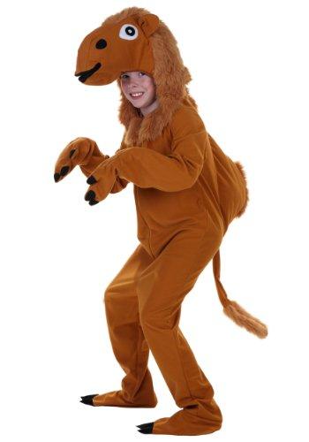 Big Boys' Child Camel Costume Large