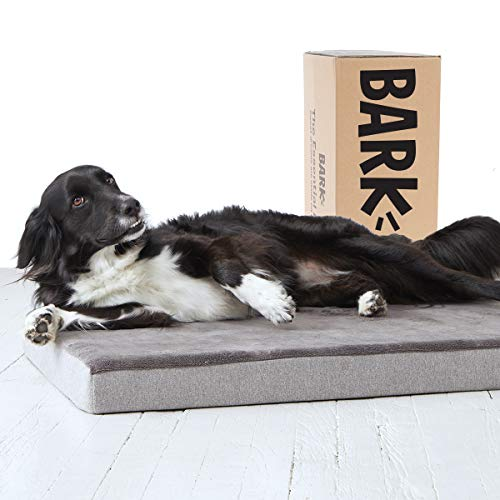 BarkBox Large Gray 3