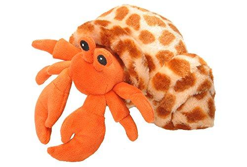 Hermit Crab Stuffed Animal 7