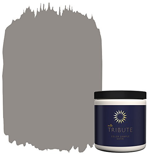 Sherwin Williams Satin (KILZ TRIBUTE Interior Satin Paint & Primer In One,  8-Ounce Sample, Chalk Suede (TB-28))