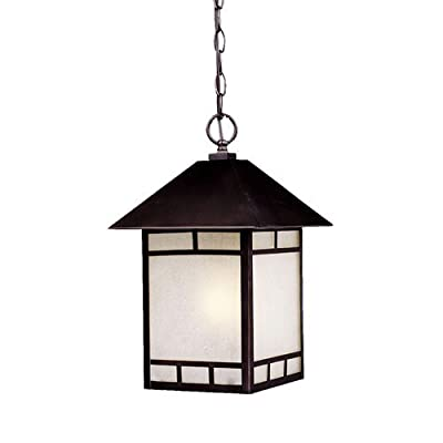 Acclaim 9026ABZ Artisan Collection 1-Light Outdoor Light Fixture Hanging Lantern, Architectural Bronze