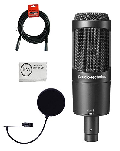 (Audio-Technica AT2050 Multi-Pattern Condenser Microphone Bundle with Pop Filter, XLR Cable, and Austin Bazaar Polishing Cloth)