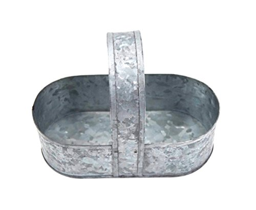 Creative Co-Op DE7384 Galvanized Tin Caddy with Holder Use it for a lot more Flower Arrangement