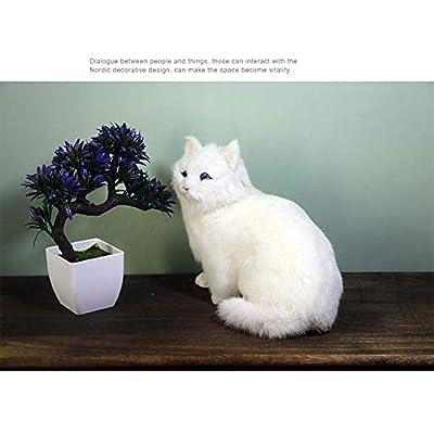 BSWL Simulation Persian Cat, Fur Animal, Handicraft, Creative Christmas Birthday Gift, Home Decoration,a: Sports & Outdoors