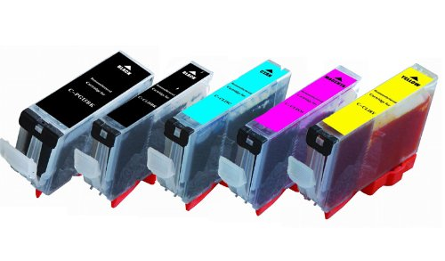 10-Pack (2B/2B/2C/2M/2Y) Non-OEM Printer Ink with Chip for PGI-220 CLI-221 Canon Pixma iP3600 iP4600 iP4700 MP560 MP620 MP640 MX860 MP980