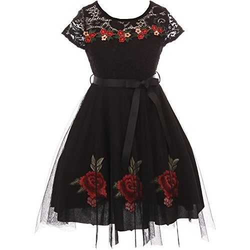 CrunchyCucumber Little Girls Cap Sleeve Lace Bodice Tulle Skirt Dress with Floral Embroidery Black - Size 4 ()
