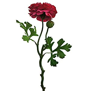 Lily Garden 6 Stems Silk Ranunculus Artificial Flowers (Red) 78