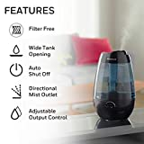 Honeywell HUL535B Cool Mist Humidifier Black Filter Free with Auto Shut-Off & Variable Settings for Medium Room, Bedroom, Baby Room