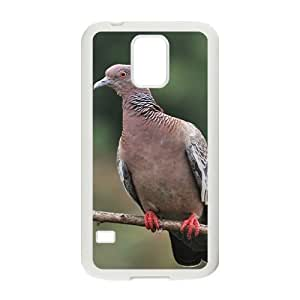 Blaick Pigeon Hight Quality Plastic Case for Samsung Galaxy S5