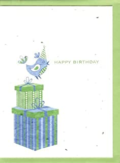 product image for Grow A Note® Happy Birthday Bird Cards 4-Pack
