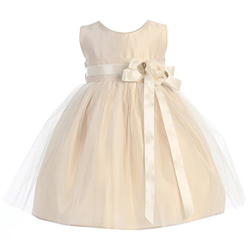 Sweet Kids Baby Girls Champagne Floral Accent Flower Girl Dress 24M