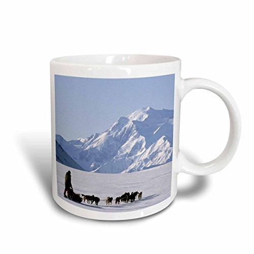 3dRose 87565/_4 Moose Wildlife Alaska-US02 JMC0001-Joe and Mary Ann McDonald Two tone black mug White 11 oz Denali NP