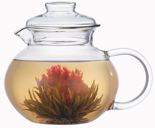 Primula Glass Top (Primula Glass Stovetop Tea Pot with Infuser)