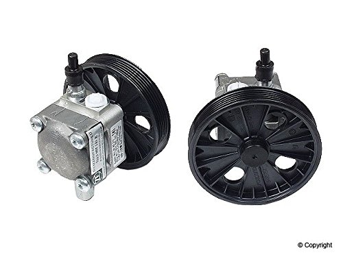 Power Steering Pump - 8603052